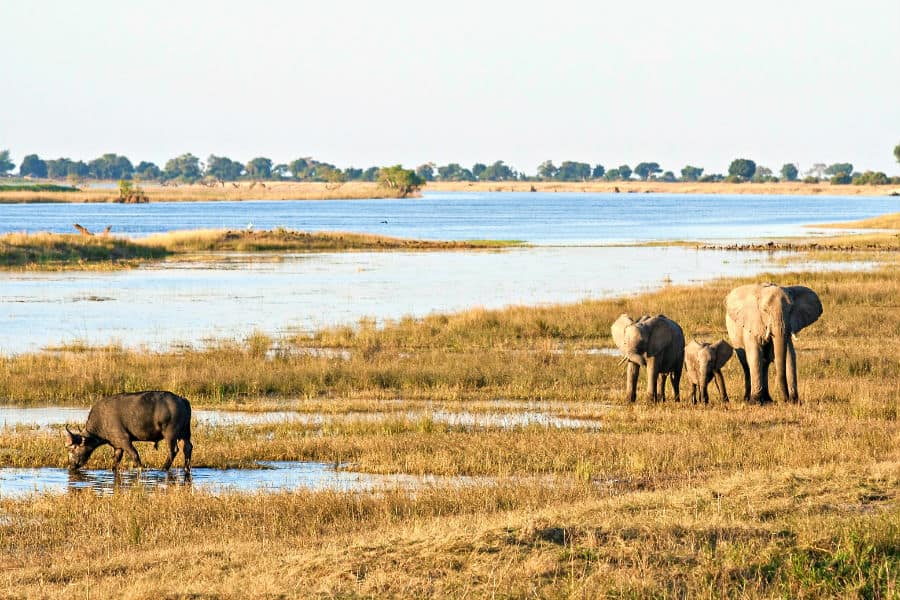 Botswana economy