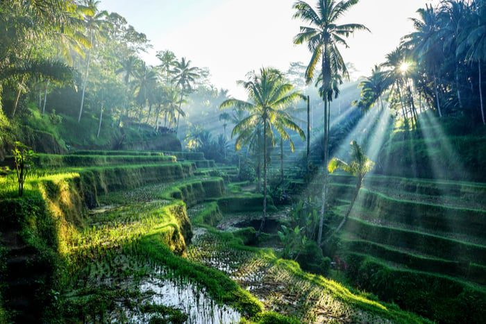 Most livable cities in Southeast Asia Bali Indonesia