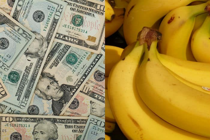 US dollar inflation vs. the price of bananas