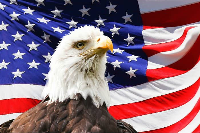the freedom in the united states of america Here are some of the nicknames for america that are commonly used  the statue of liberty which represents the freedom and independence of the united states,.