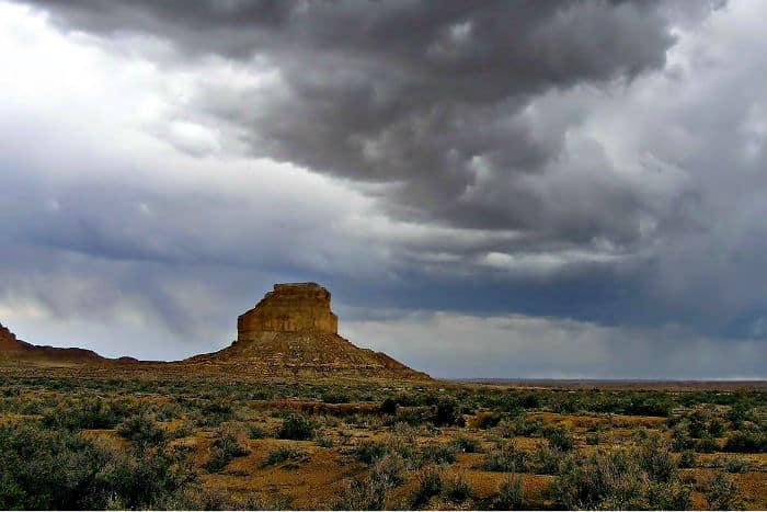 New Mexico anonymous LLC