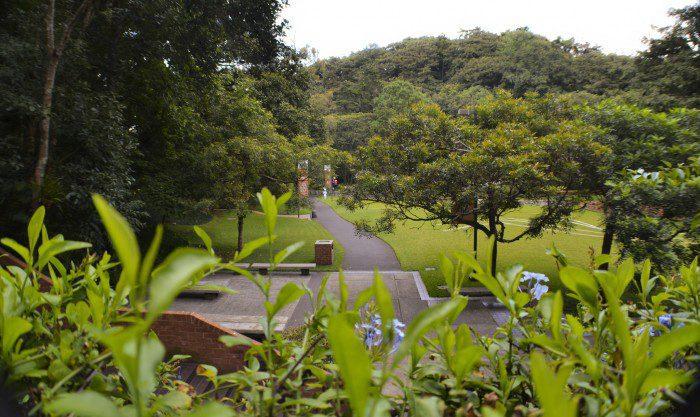 Manuel F. Ayau Garden