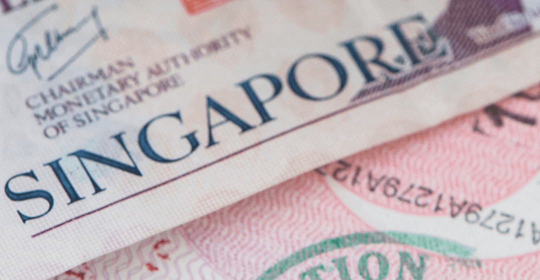 How To Get PR and Citizenship in Singapore With a Business or Investment
