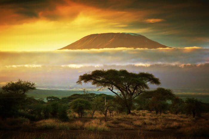The five best African countries to invest in for high yield