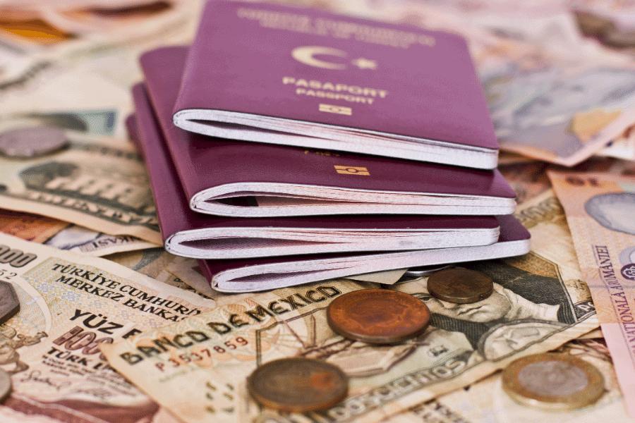 Second Passport ROI