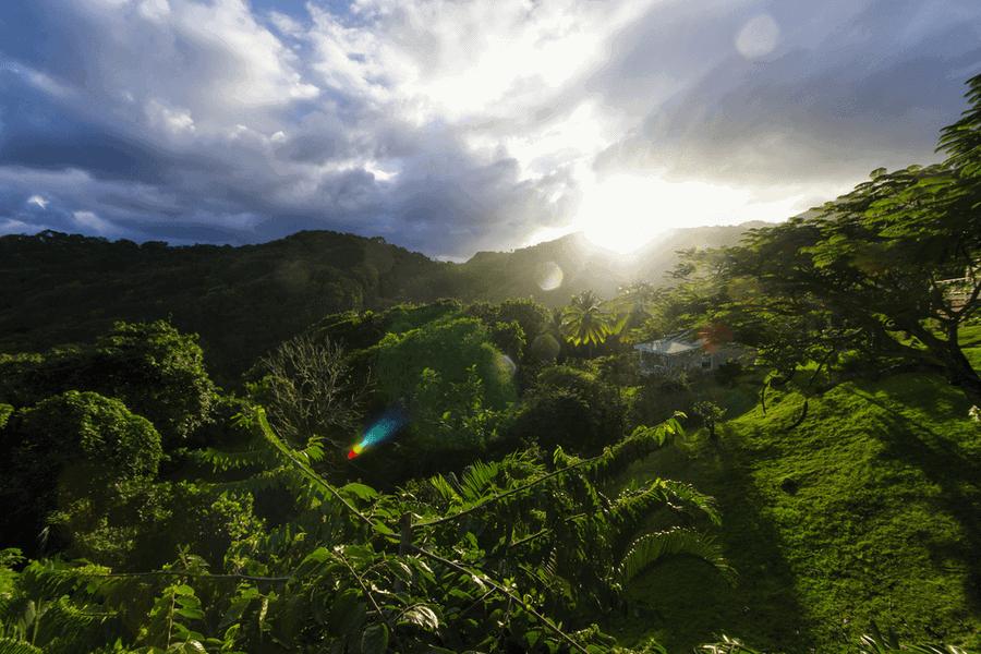 CASTLE BRUCE, DOMINICA Passport