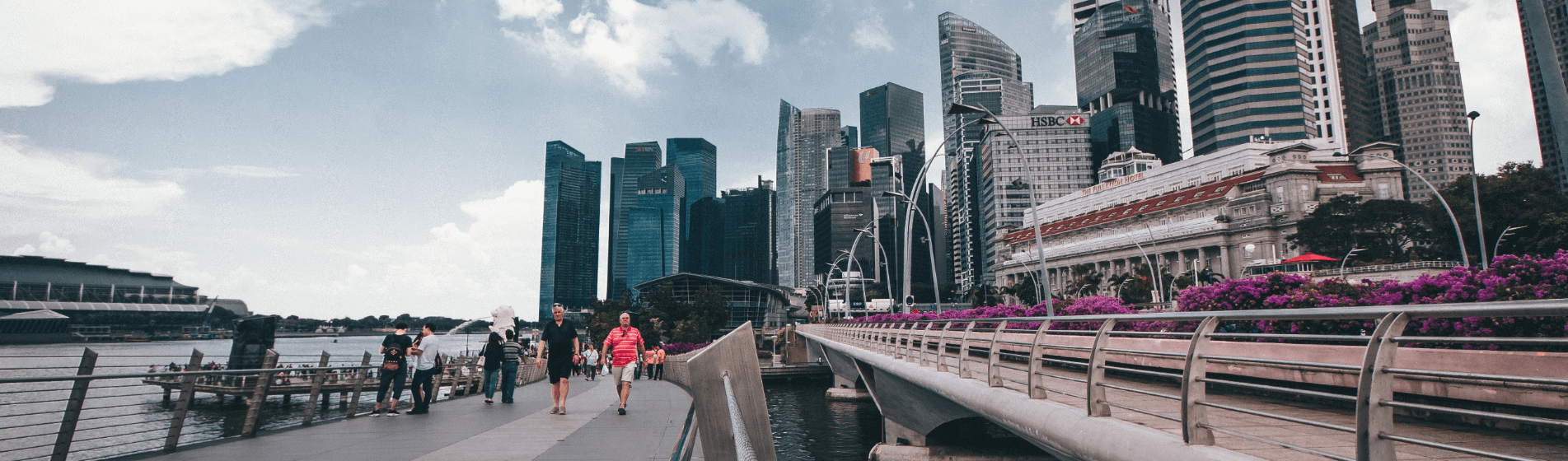 Economic freedom in Singapore and why you must be planting flags