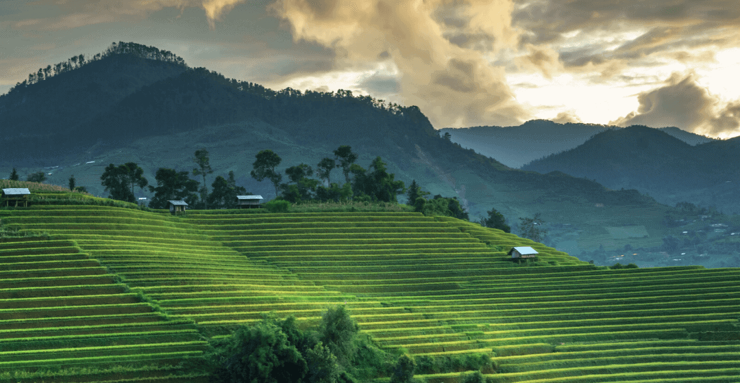 The Nomad Guide to Living in Bali, Indonesia