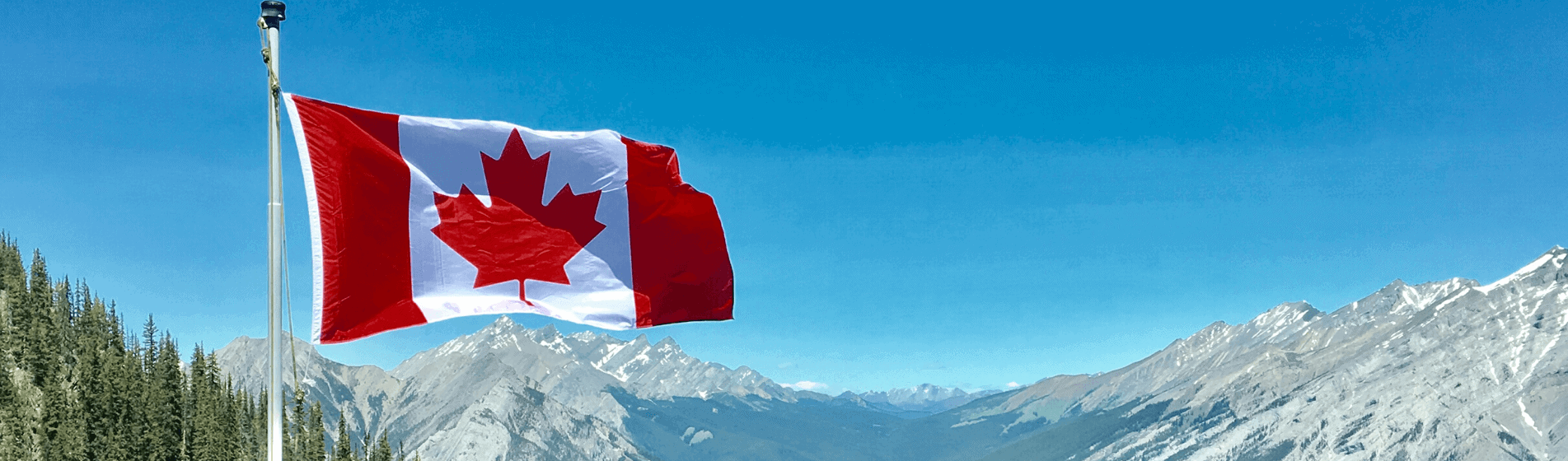 Why moving to Canada is the wrong response to a Trump presidency