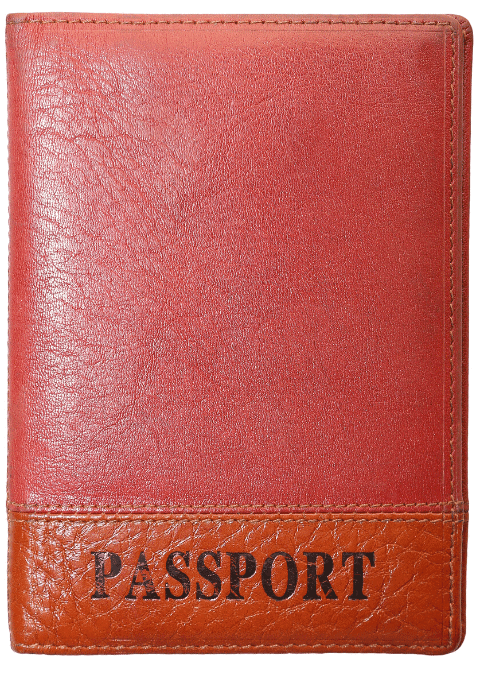 Generic Passport Cover - Transparent
