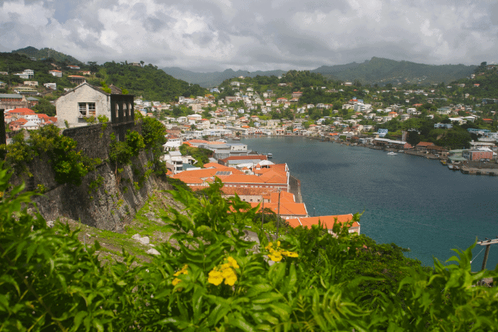 Pre-check for Grenada citizenship by investment