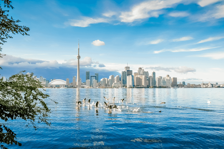 Toronto City Canada - You Have a Choice