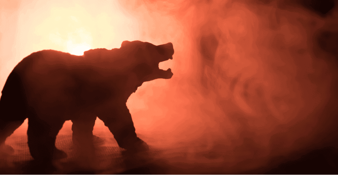 Beware of Doom and Gloom: Why I'm Not a Permabear