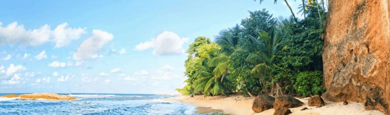 Dominica Citizenship By Investment: Entrepreneur Visa Program